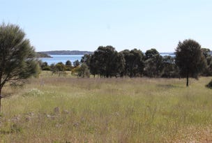 Lot 1, 351 Pinta Track, Mount Dutton Bay, SA 5607