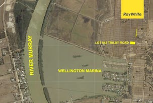 Lot 842 Trilby Road, Wellington East, SA 5259