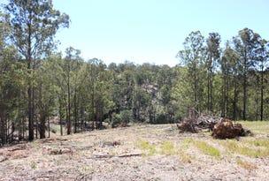 Lot 1 DP 102782 1402 Nowendoc Road, Mount George, NSW 2424