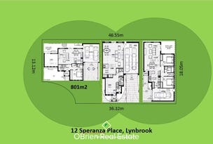 12 Speranza Place, Lynbrook, Vic 3975