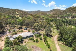 497 Riverlea Road, Mudgee, NSW 2850