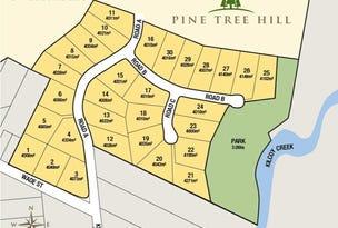 LOT 12 PINE TREE DRIVE, Winya, Qld 4515