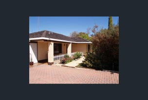 4  Miller Street, Waikerie, SA 5330