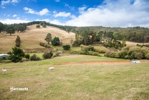 Lot 2 Reeves Lane, Dover, Tas 7117