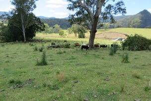 L2 Gradys Creek Rd, Loadstone, NSW 2474