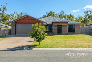 19 Stringybark Avenue, Norman Gardens, Qld 4701