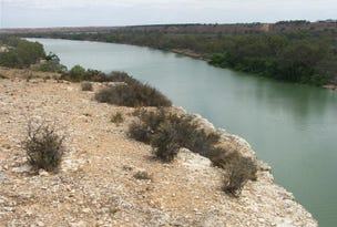 Lot 25 Nildottie Road Greenways Landing, Nildottie, SA 5238