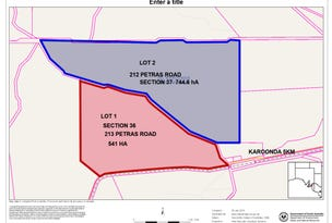212 & 213 Petras Road, Karoonda, SA 5307
