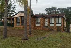 123 Helicia Road, Macquarie Fields, NSW 2564