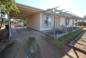394 Winkie Rd, Winkie, SA 5343