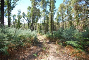 Lot (1) Pearces Road, Strickland, Tas 7140