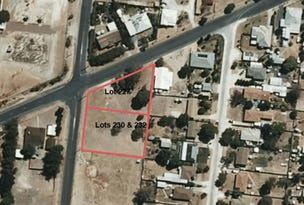 227,230,232 Pigeon Flat Road, Bordertown, SA 5268