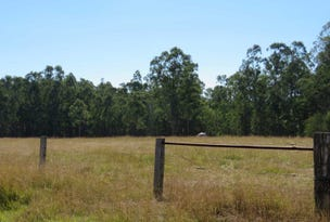 Lots 24 & 27 Deadman Creek Road, Tabulam, NSW 2469