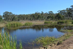 Lot 1 & Lot 28 956 Mount Larcom-Bracewell Road, Machine Creek, Qld 4695