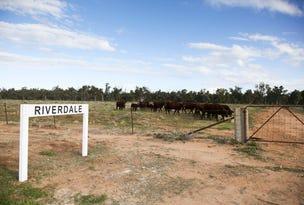 'Riverdale' Murrumbidgee River Road, Carrathool, NSW 2711