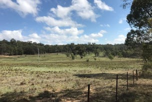 252 Port Macquarie Road, Rylstone, NSW 2849
