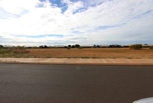 Lot 723 (95) Mujira Ramble, Baynton, WA 6714