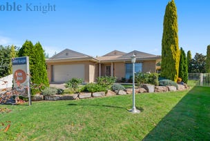 20 Mitchell Court, Mansfield, Vic 3722