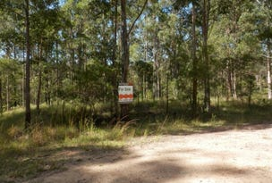 Lot 213 Long Gully Rd, Drake, NSW 2469