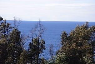 Lot 4 Tasman Highway, Four Mile Creek, Tas 7215