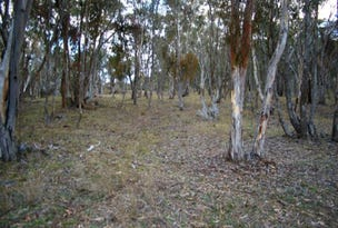 Lot 231 Wollun Road, Walcha, NSW 2354