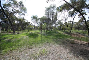 Lot 678 Pitt Street, Pingelly, WA 6308