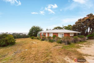 119 Harveys Farm Road, Bicheno, Tas 7215