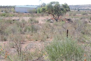 Lot 121, 5 McConville Road, Quorn, SA 5433