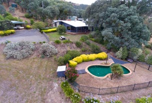 387 Ti-Tree Creek Road, Yea, Vic 3717