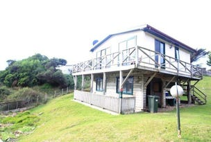 17 Gardiner Street, Arthur River, Tas 7330