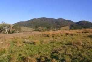 L342 Mt Darragh Road, Wyndham, NSW 2550