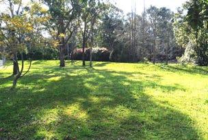 9A Kirrang Drive, Medowie, NSW 2318