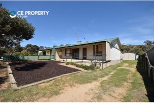 13 Perseverance Court, Younghusband, SA 5238