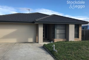 19 Mountain Grey Circuit, Morwell, Vic 3840