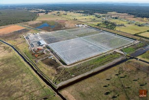 Maria's Farm Veggies, 183 Cabbage Tree Road, Williamtown, NSW 2318
