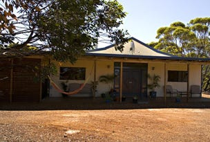 Lot 325 Old Newdegate Road, Ravensthorpe, WA 6346