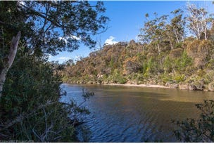 31 Bresnehans Road, Little Swanport, Tas 7190
