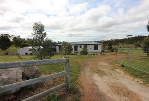 Lot 175 Cockatoo Road, Boston, SA 5607