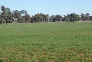 100 Cains Lane, Coolamon, NSW 2701