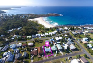 43 Lurnea Avenue, Bawley Point, NSW 2539