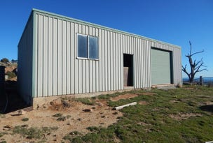 1299 Tarrants Gap Road, Wyangala, NSW 2808