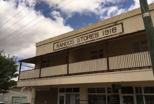 Unit 1/15 Angus Avenue, Kandos, NSW 2848