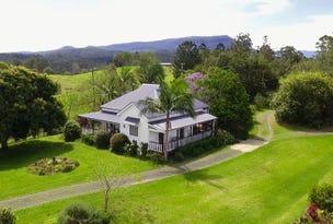 300 Stanger Road, Stony Chute, NSW 2480