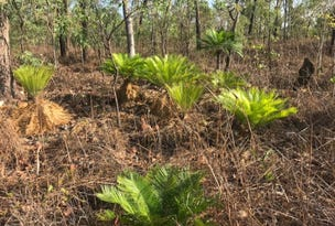 Lot 04760, Malachite Road, Lloyd Creek, NT 0822