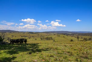 1394 Webbers Creek Road, Paterson, NSW 2421