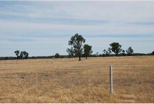468 Chinamans Road, Tocumwal, NSW 2714