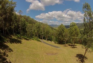 Lot 41, Lamington National Park Road, Canungra, Qld 4275