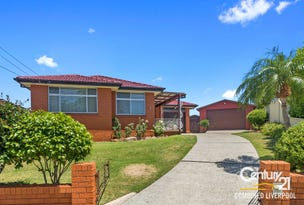 3 Kelly Place, Mount Pritchard, NSW 2170