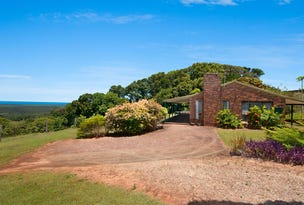 111 Buckombil Mountain Road, Meerschaum Vale, NSW 2477