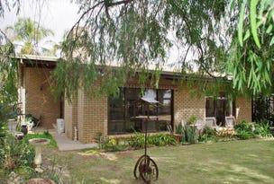 193 Goolwa Street, Renmark, SA 5341